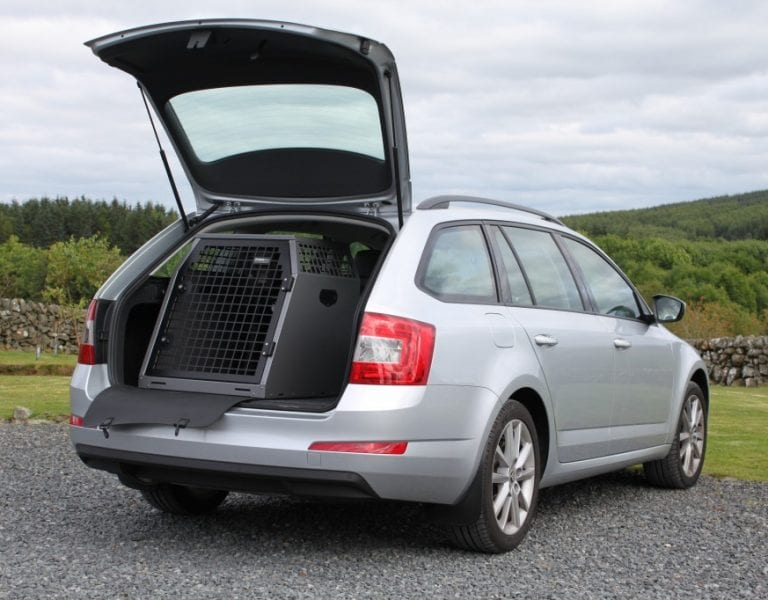 Top 8 Vehicles For Dog Owners You And Your Buddy On The Road